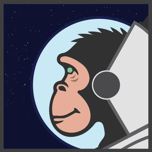 Space X-Chimp: My Cyber Universe